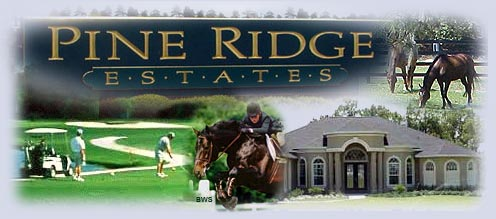 Pine Ridge Florida - information about this stunning Citrus County community with acre plus homesites, equestrian trails, and impressive homes